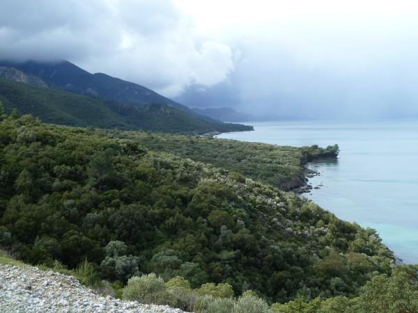 Deltasi Nationalpark