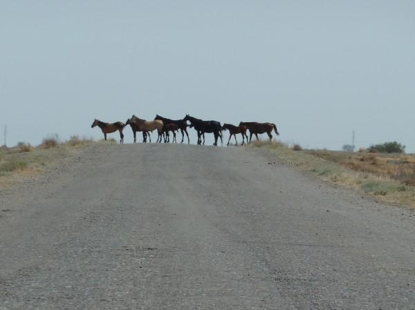 Nebenstraße Türkmenistan