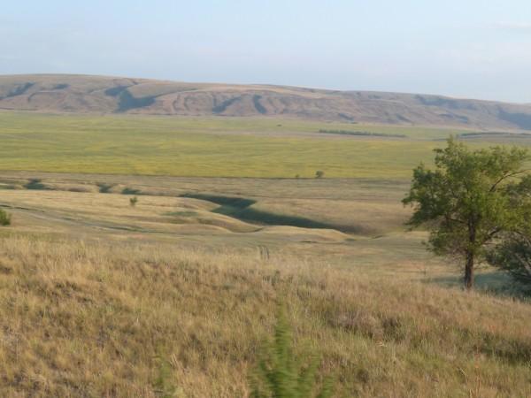 kazach steppes