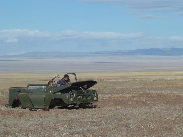 mongolische Weite