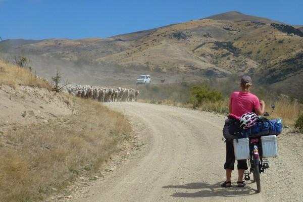 Short cut to Hawea Flat along a gravel road ///// Abkürzung nach Hawea Flat entlang einer Schotterpiste.