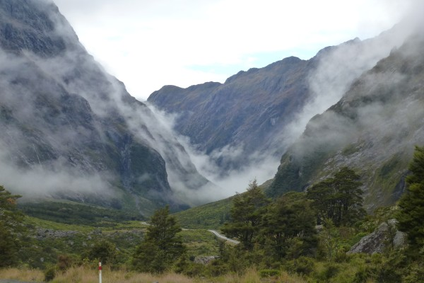 Milford Sound road in the morning